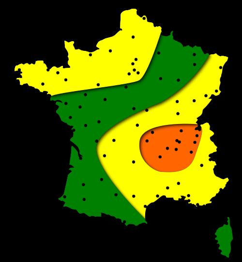 Pollens Frêne : Carte et risques d'allergies pour les régions Centre - Val de Loire et la France